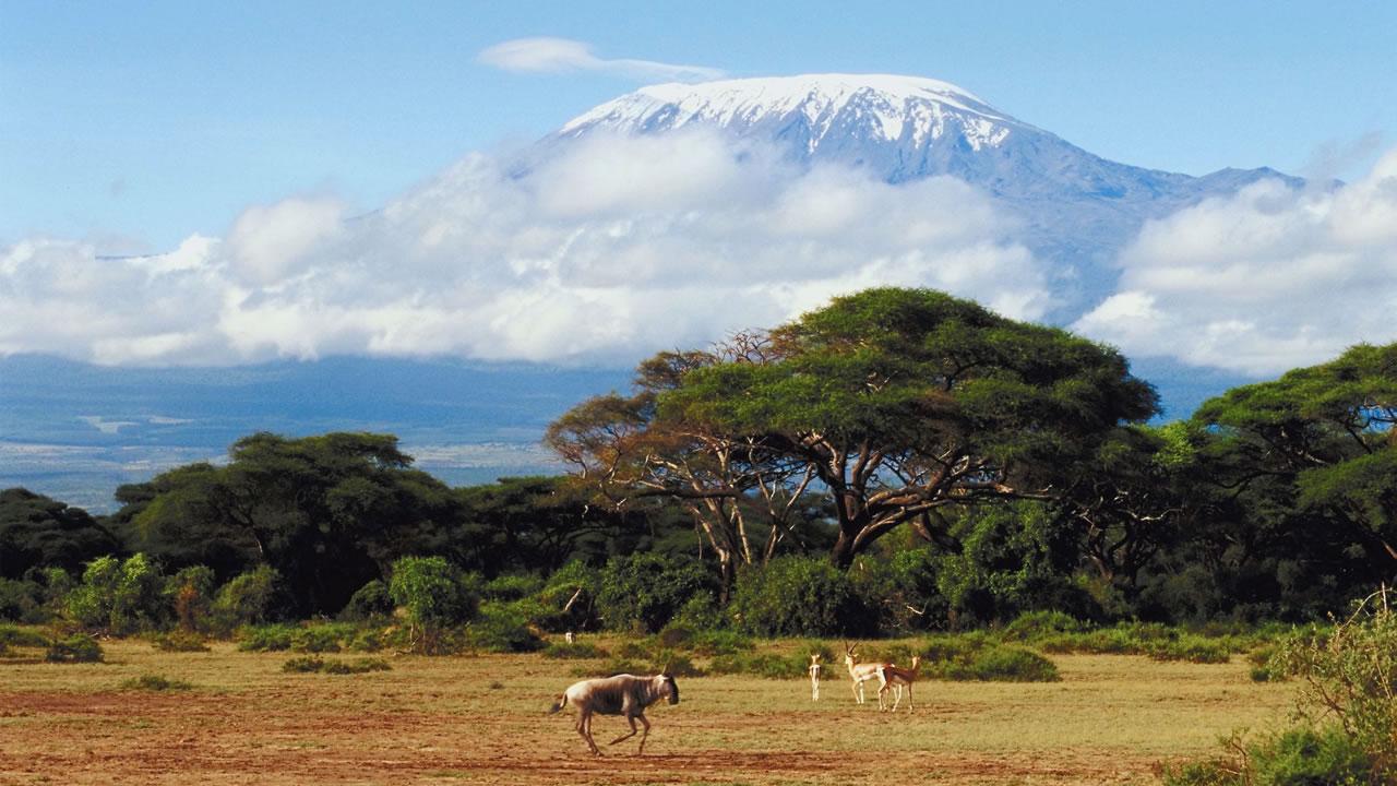 Reizen Naar Tanzania Kilroy