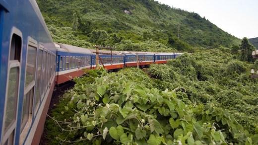 We hebben wereldwijd diverse mogelijkheden voor je om met de trein