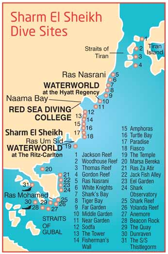 Sharm el Sheikh dive sites